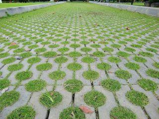 包头草坪砖现场案例